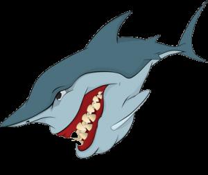 shark-tr